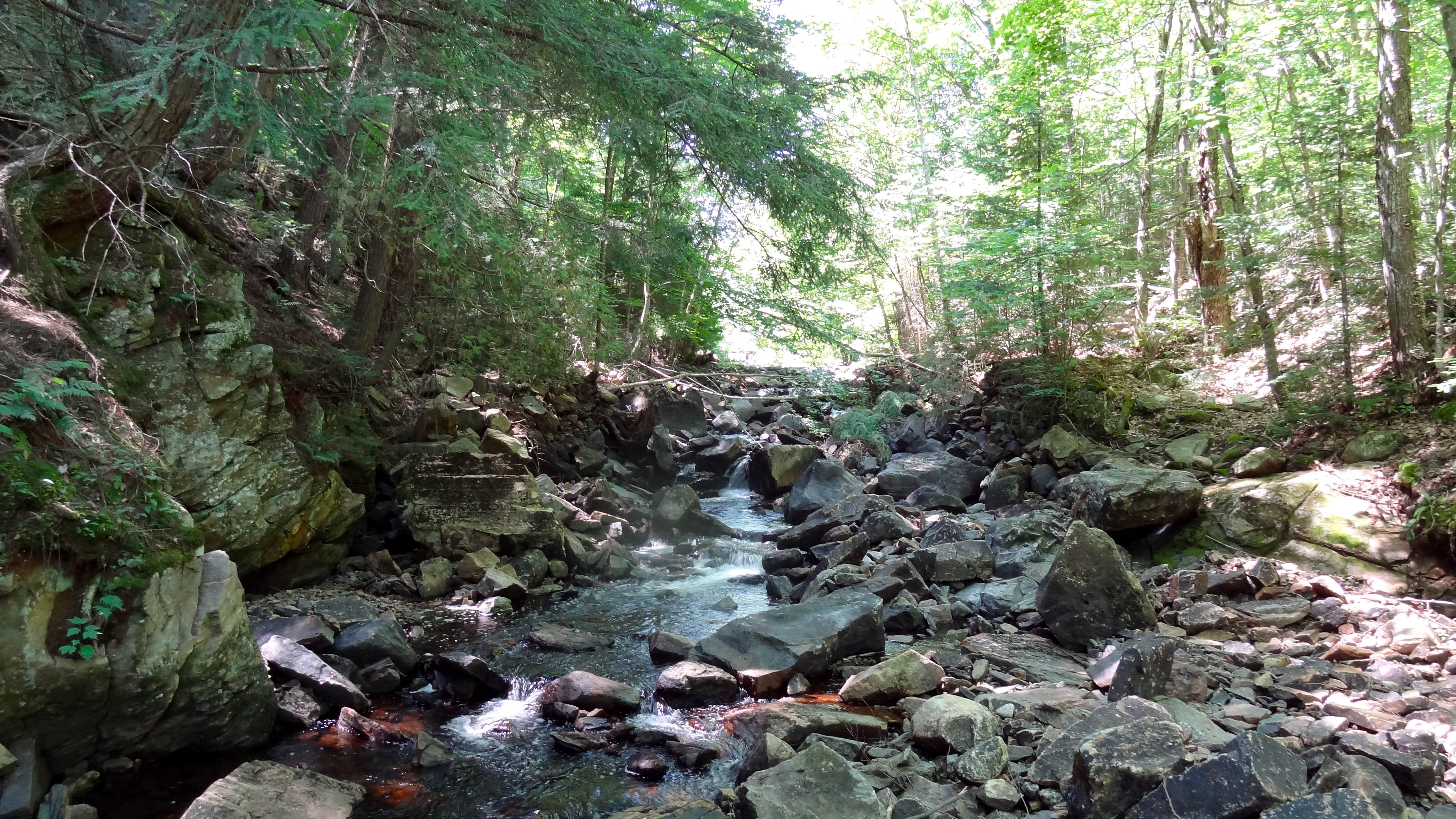 Crossing a stream: Track and Tower trail in Ontario's Algonquin Provincial Park