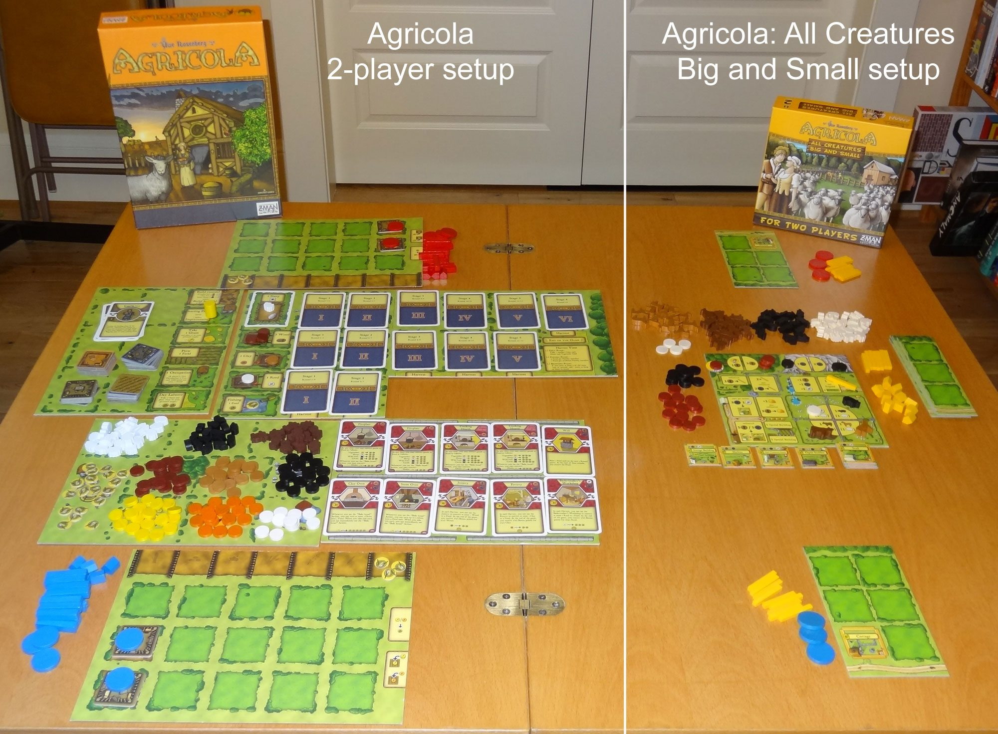 Agricola and All Creatures setup