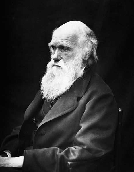Charles Darwin. Image: Public Domain