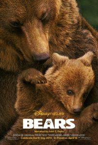 bearsposter