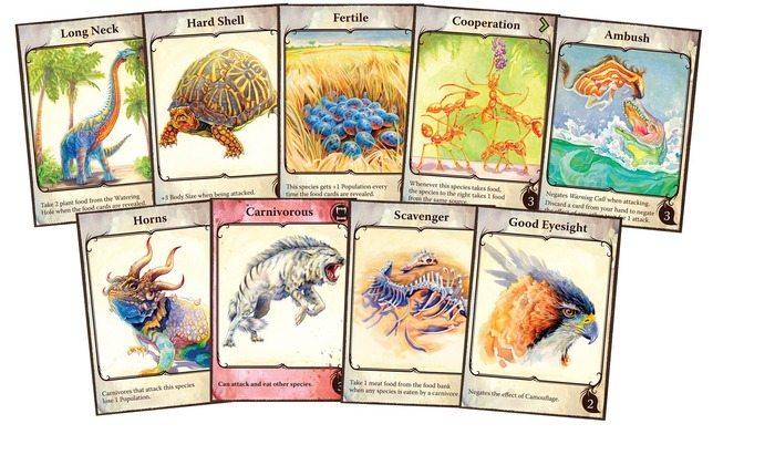 Evolution cards