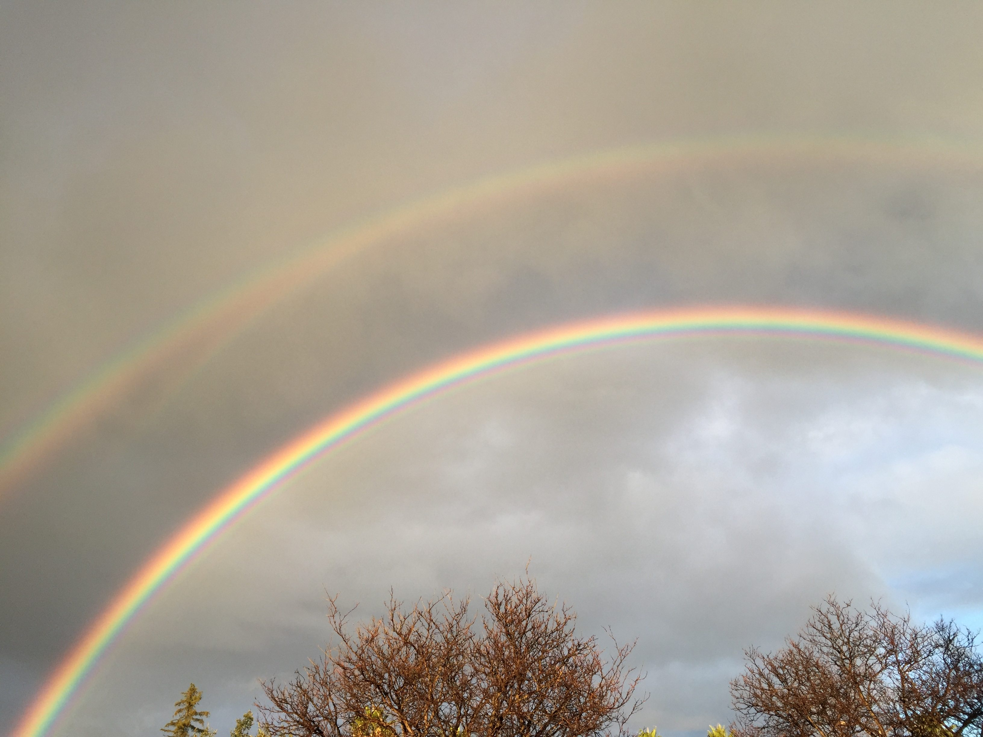 A lovely double rainbow over Fremont, CA. (photo by Ken Denmead)