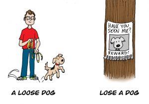 LOSE-LOOSE-3
