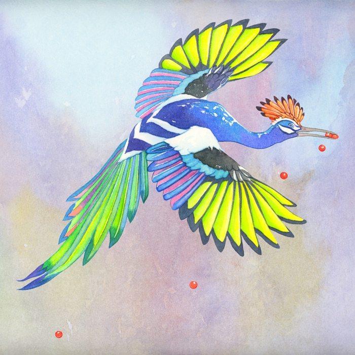 Evolution Flight Seed Drop
