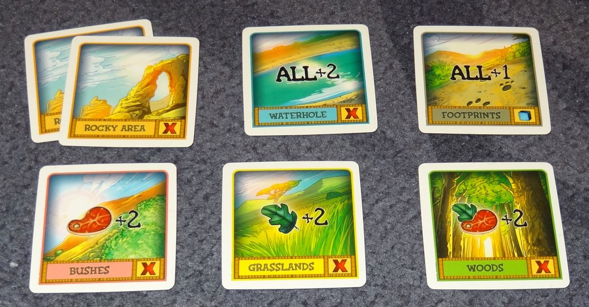 String Safari land cards