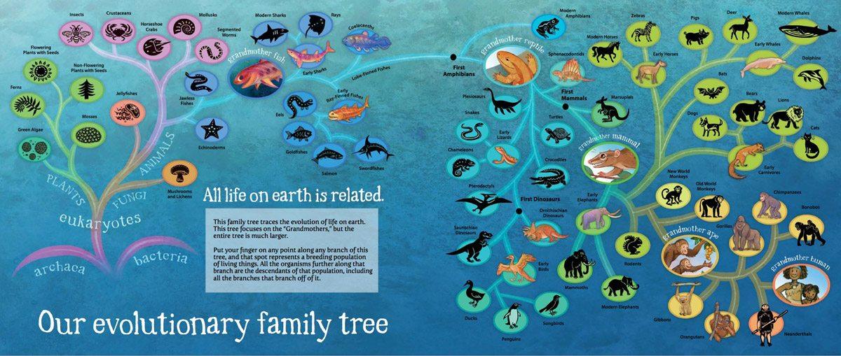 GrandmotherFish-Map