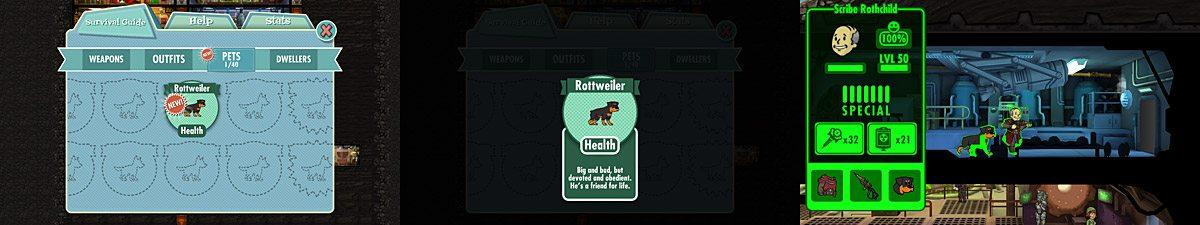 FalloutShelter-Rottie