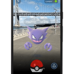 Pokemon Go encounter 2