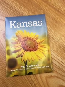 Visit a Kansas rest area near the state border and they will give you a packet of sunflower seeds for your garden. Image credit: Patricia Vollmer