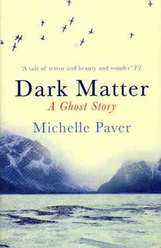 darkmatter_paver