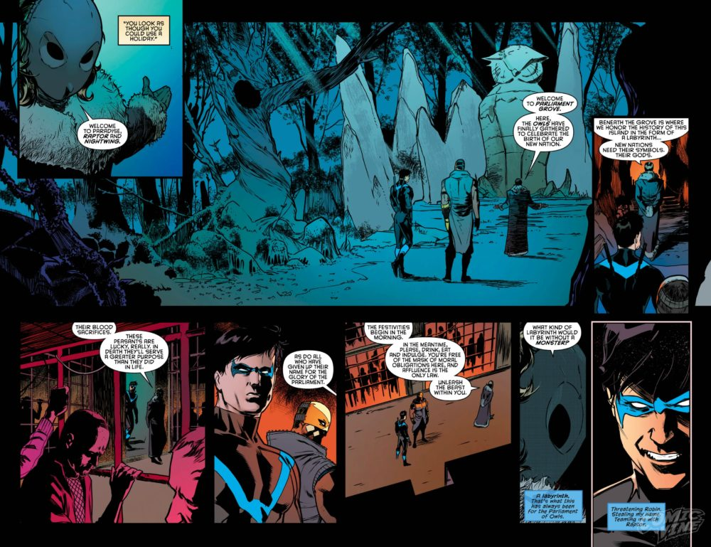 Raptor and Nightwing: Teammates? image copyright DC Comics