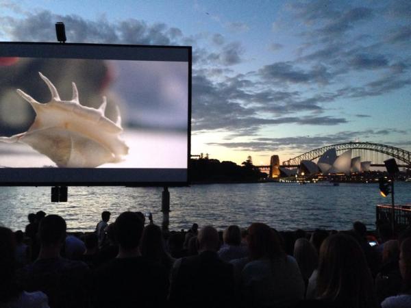 Sydney Summer Celebrations