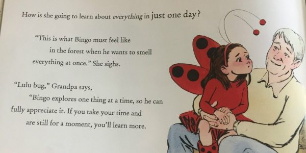 'Ladybug Girl's Day Out with Grandpa': An Adorable Story for Young and Old | Caitlin Fitzpatrick Curley, GeekMom