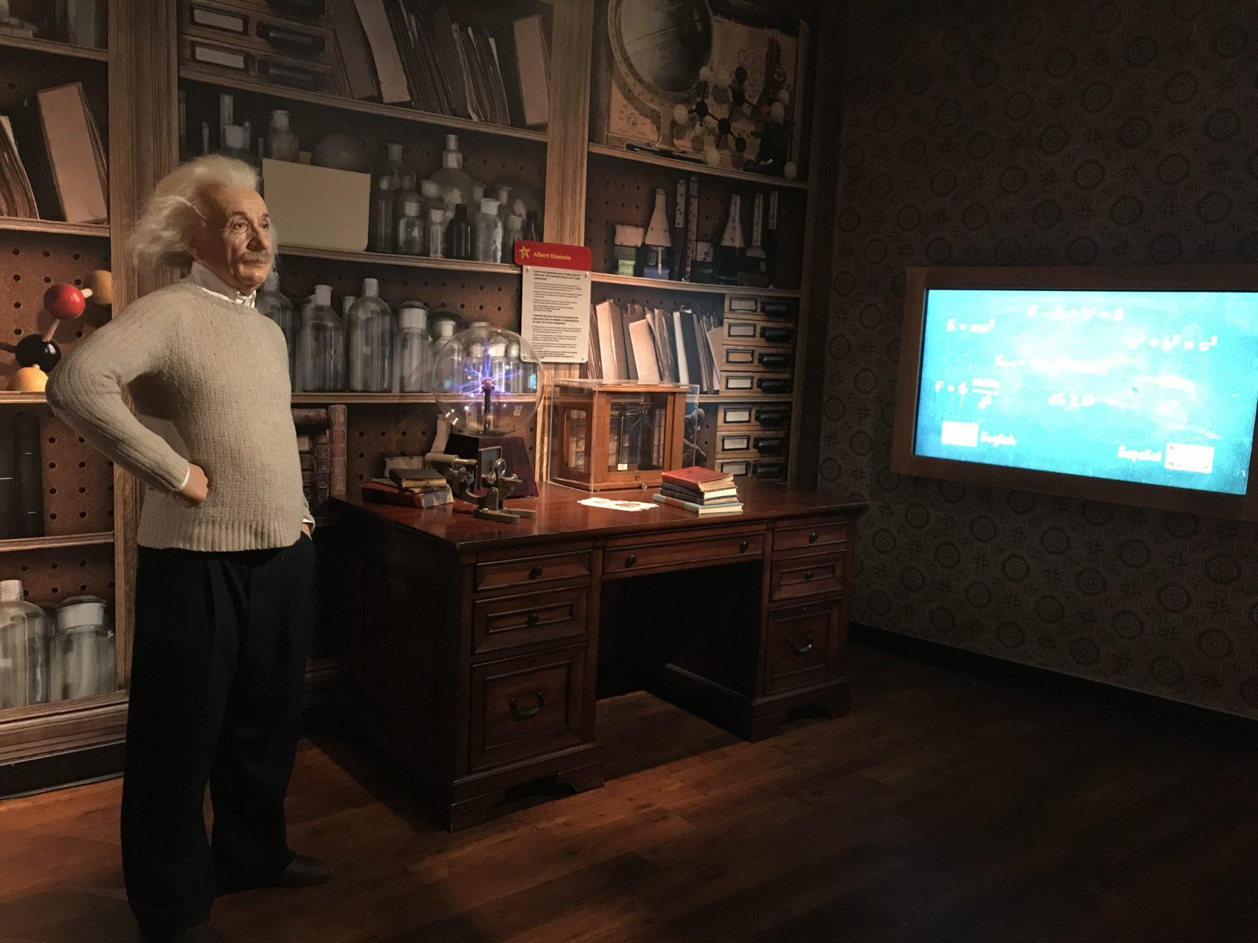 Einstein \ Image: Dakster sullivan