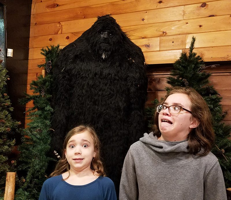 Sasquatch from Expedition: Bigfoot!