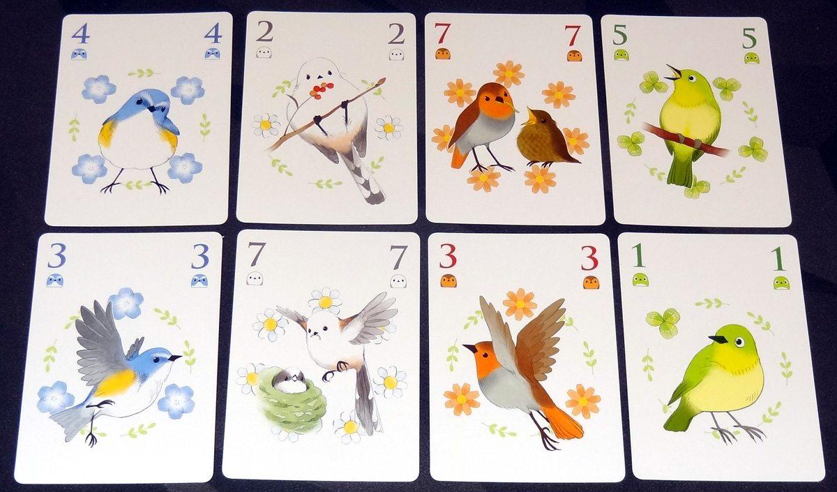 Songbirds bird cards