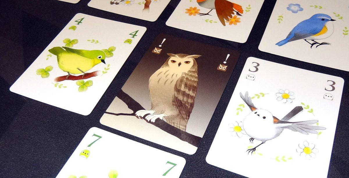 Songbirds owl card