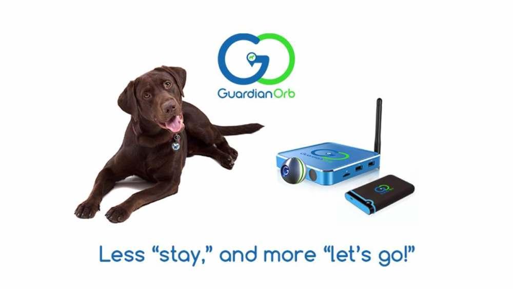 guardian orb pet tracker