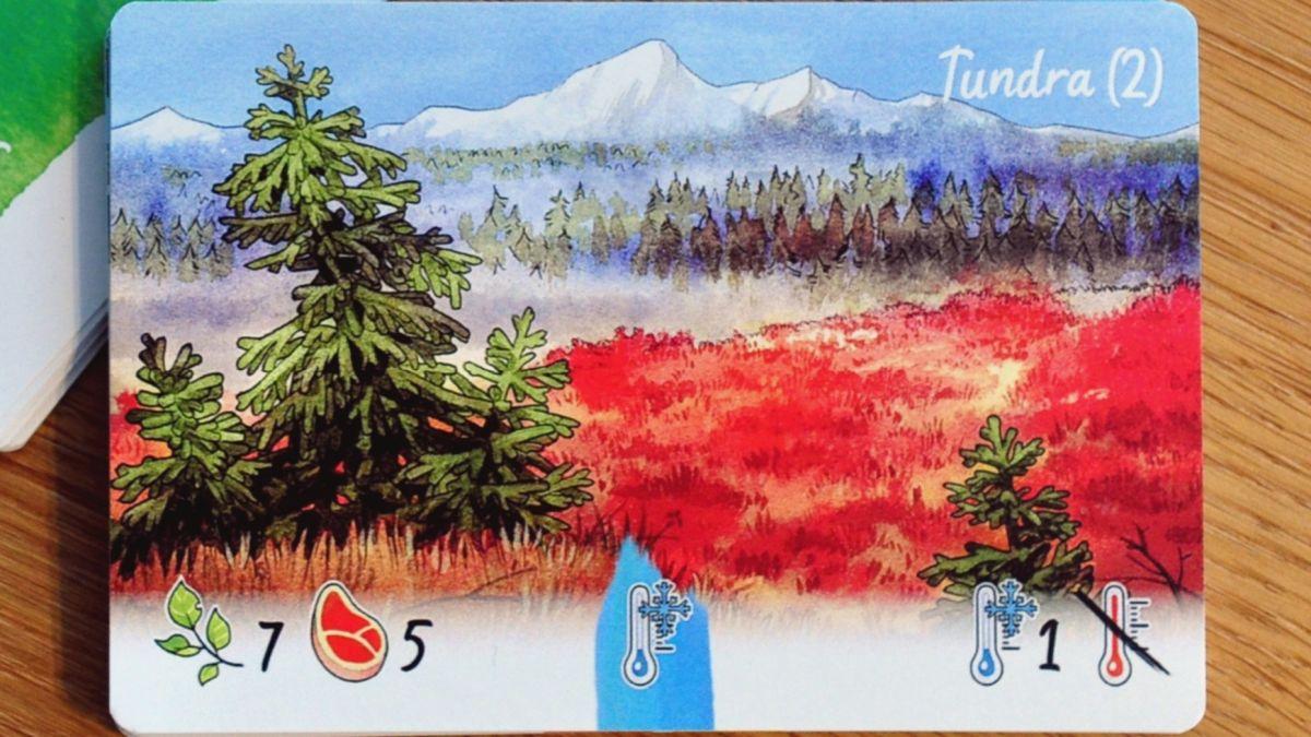 Darwin's Choice Vegetation zone card: Tundra