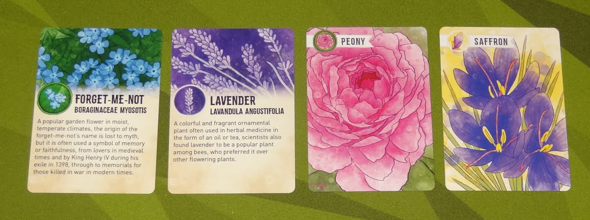 Herbaceous Sprouts bonus info cards