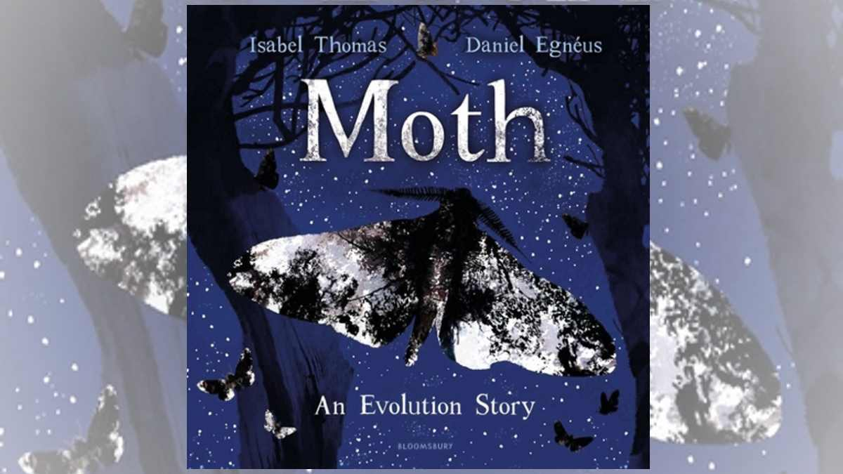 Moth Evolution Story