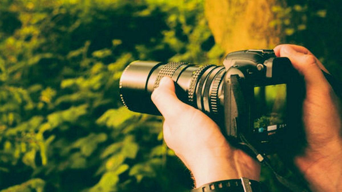 GeekDad Daily Deal: The DSLR Photography Course Bundle - GeekDad
