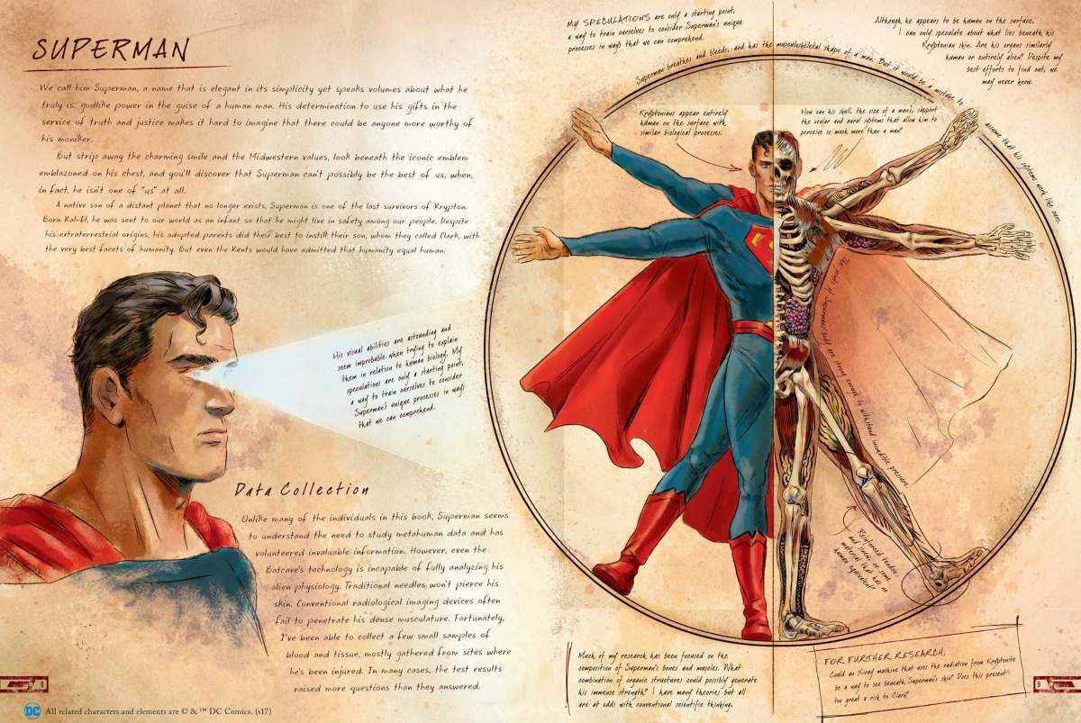 DC Comics Anatomy Metahuman