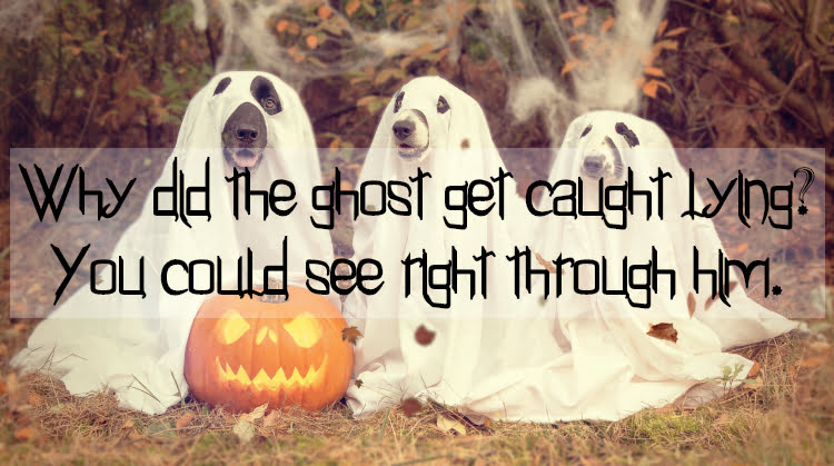Dogs dressed as ghosts with text Why did the ghost get caught lying? You could see right through him.