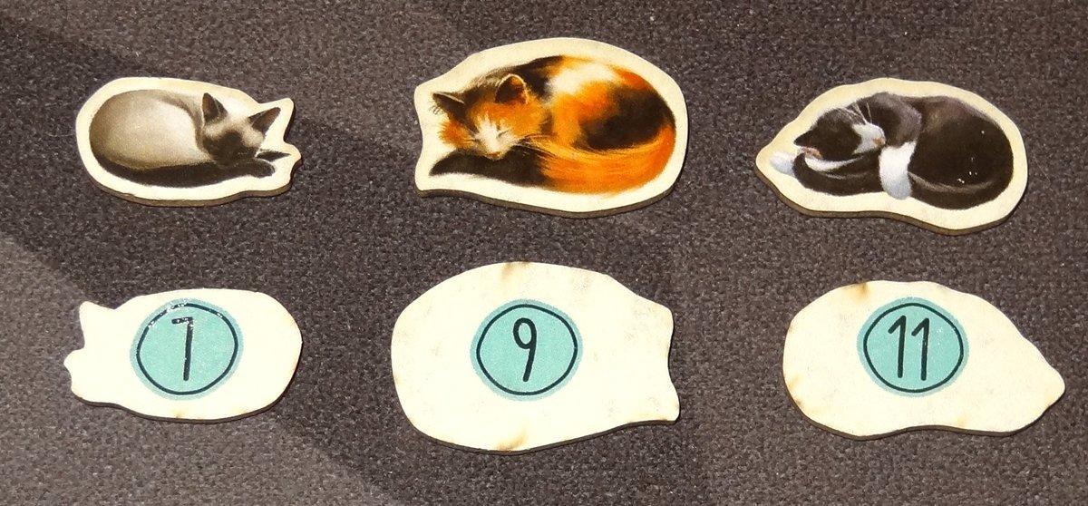 Calico cat tokens