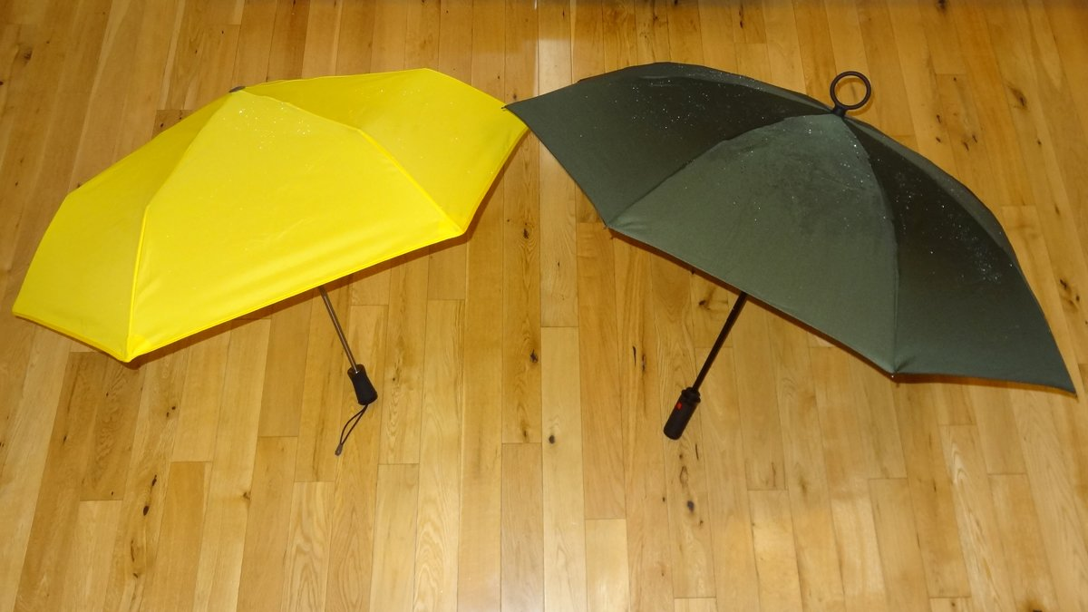 Hedgehog Umbrella and YESbrella