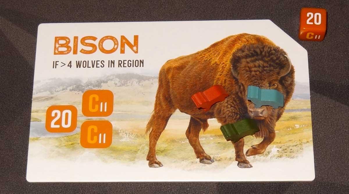 The Alpha bison tile