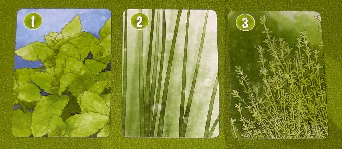 Herbaceous Pocket special herbs