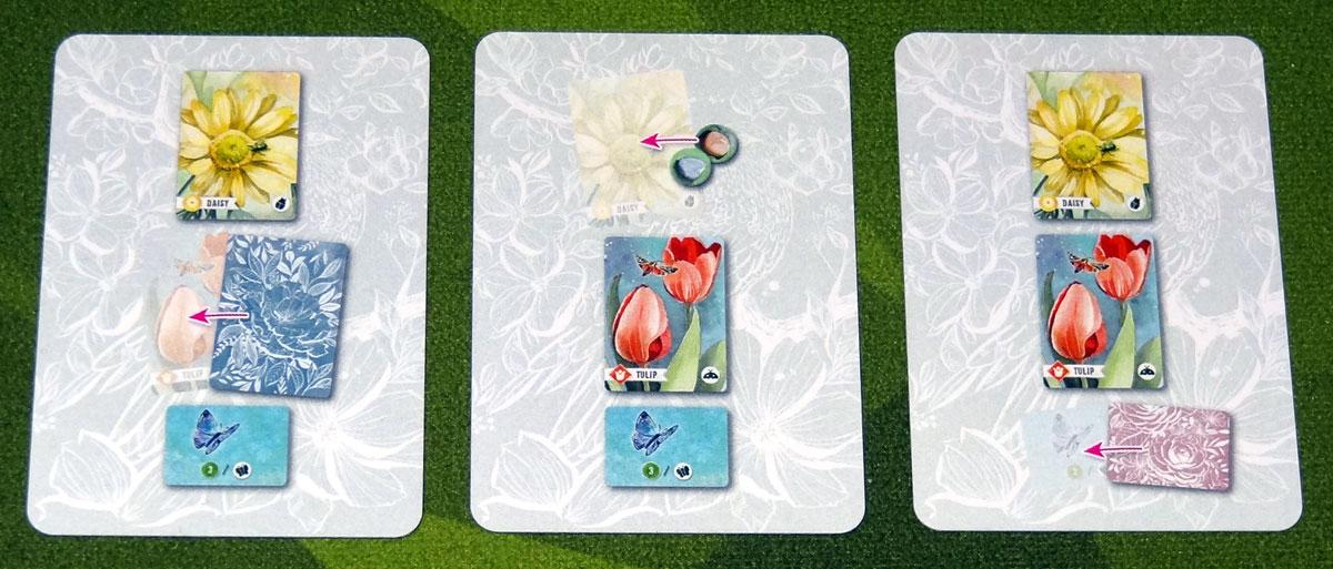 Floriferous crow action cards