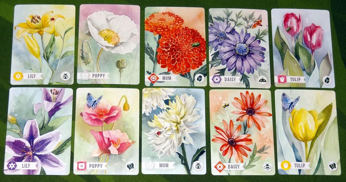 Floriferous Flower cards