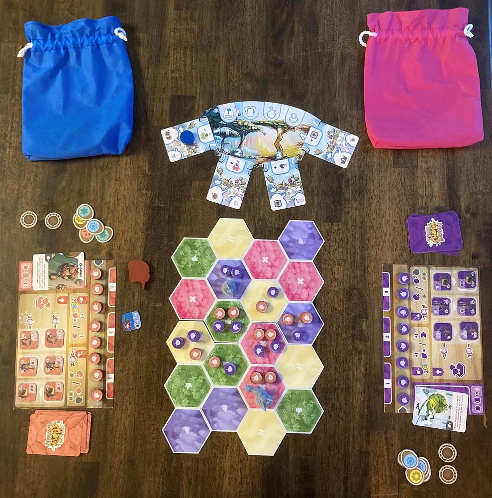 game setup
