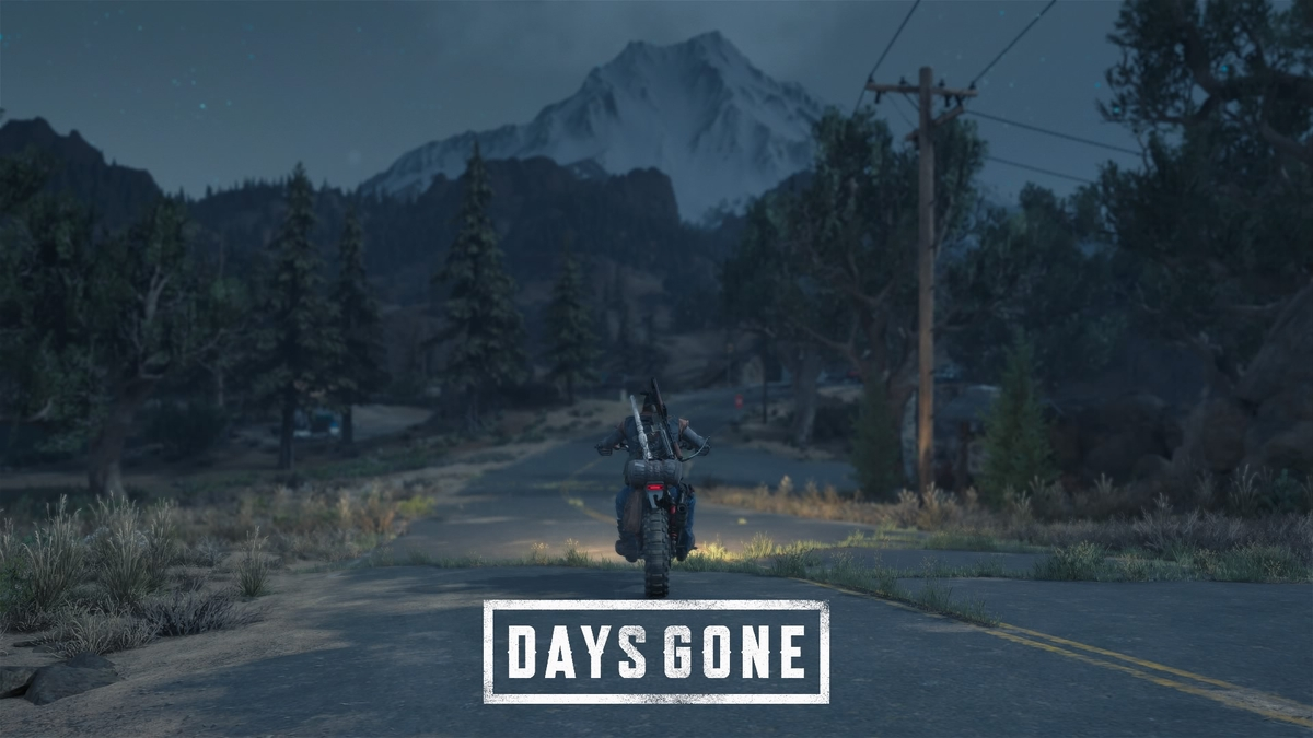 Days Gone: The road continues?