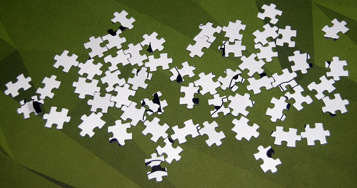 Hidden Cows puzzle - cow pieces