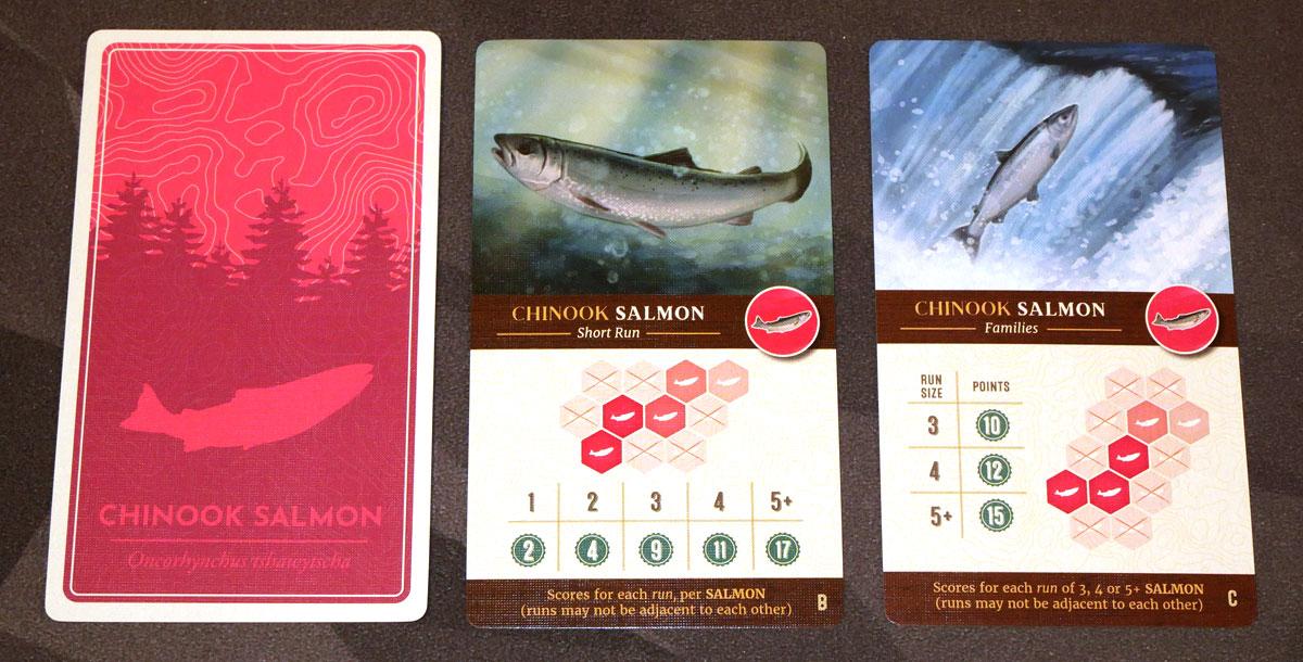 Cascadia salmon cards