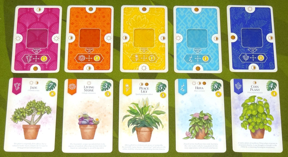 Verdant Room Cards and Plant Cards
