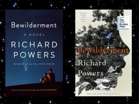 Bewilderment covers