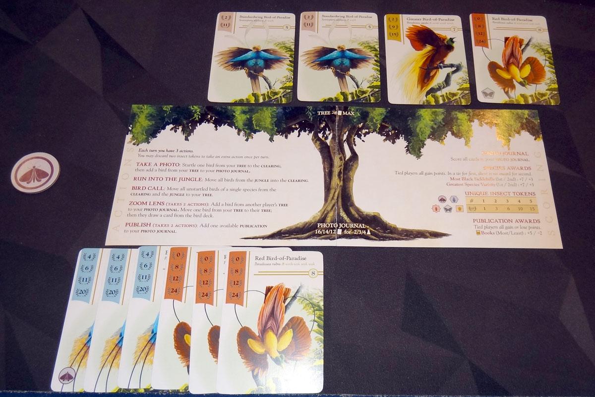 Birdwatcher Tree with bird cards above and below