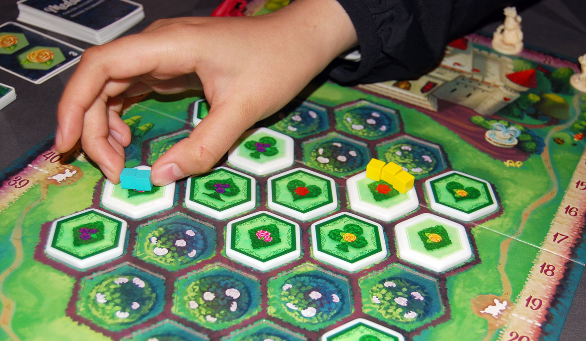 Paint the Roses placing clue tokens