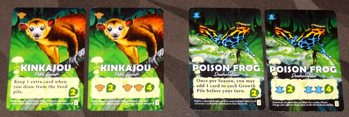 Canopy animal cards