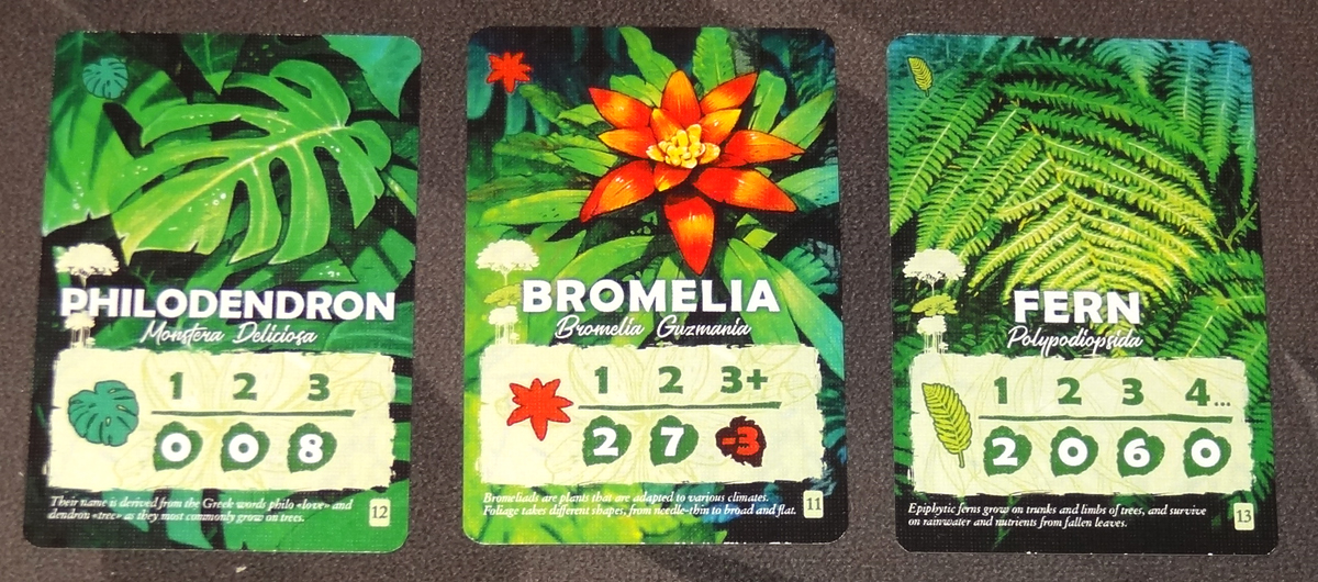 Canopy plant cards