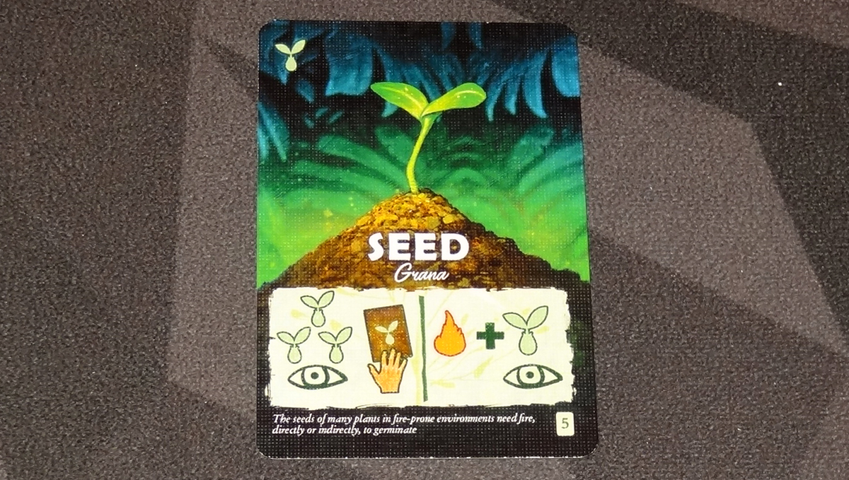 Canopy seed card