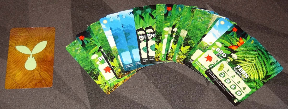 Canopy seed deck