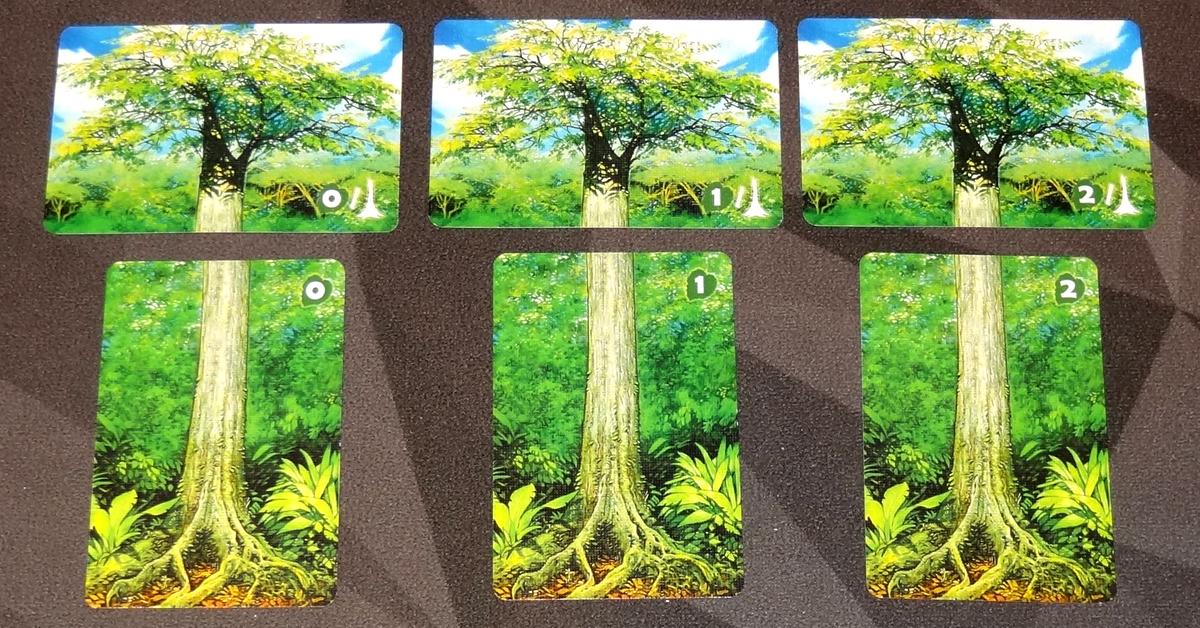 Canopy tree cards