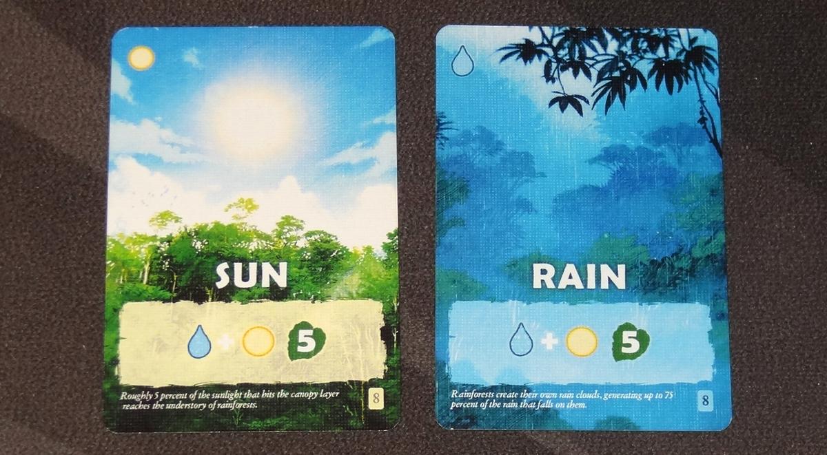 Canopy sun and rain cards